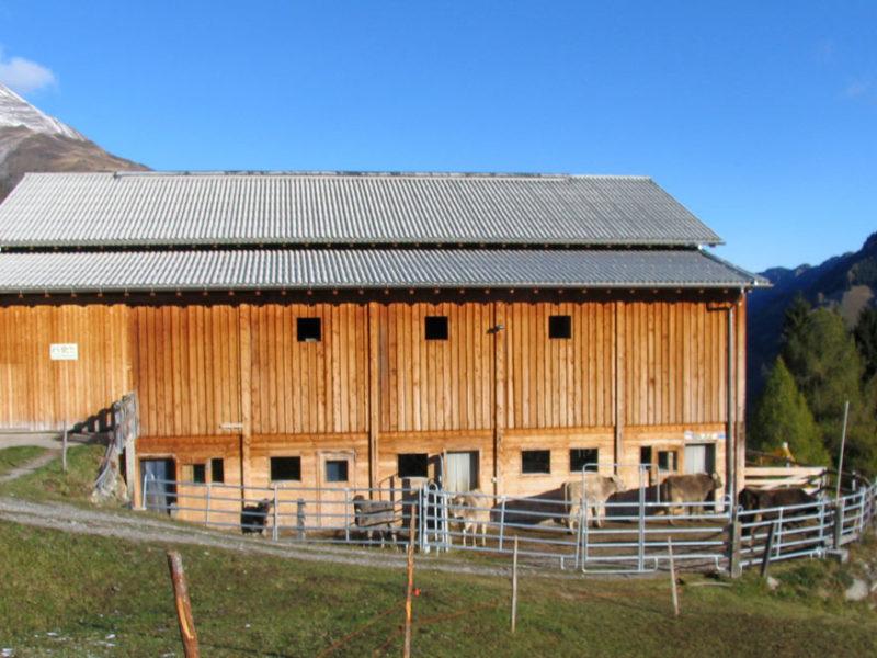 Stall Zalön, Safiental